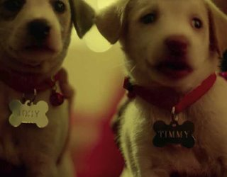SNAPDEAL - TIMMY & JOSY